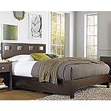 Modus Furniture RV26D5 Riva Platform Storage Bed, Queen, Chocolate Brown