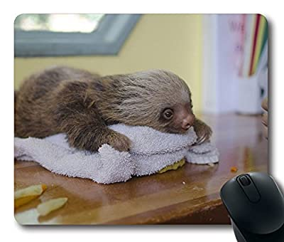 NEW Custom Fascinating Mouse Pad with Sloth Lying Animal Towel Non-Slip Neoprene Rubber Standard Size 9 Inch(220mm) X 7 Inch(180mm) X 1/8 Inch(3mm) Desktop Mousepad Laptop Mousepads Comfortable Computer Mouse Mat