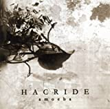 Amoeba by HACRIDE