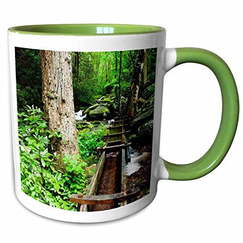 3dRose Danita Delimont - Mills - Tub Mill, Great Smoky Mountains, Tennessee, USA - US43 BJY0011 - Jaynes Gallery - 11oz Two-Tone Green Mug (mug_146559_7) Tennessee Beverage Tub