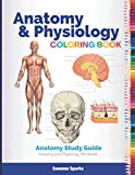 Anatomy and Physiology Coloring Book: Anatomy Study