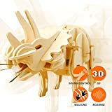 ROBOTIME 3D Wooden Dinosaur Puzzle Best Birthday Gifts for Boys