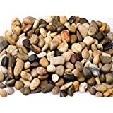 River Rocks, Pebbles, Outdoor Decorative Stones, Natural Polished Gravel, For Aquariums, Landscaping, Vase Fillers, Succulent, Tillandsia, Cactus pot, Terrarium, Bamboo Plants, 2.2 LB.(32-Oz).