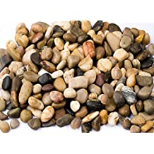 Supply Guru SG2133 River Rocks, Pebbles, Outdoor Decorative Stones, Natural Gravel, For Aquariums, Landscaping, Vase Fillers, Succulent, Tillandsia, Cactus pot, Terrarium Plants, 2 LB. (32-Oz).
