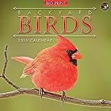 2016 Backyard Birds Wall Calendar
