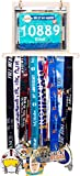 gold bar display case - LISH Race Bib and Marathon Medal Display Rack - Wall Mounted Runners Medal Hanger Complete Set, Display up to 24 Medals and 20 Race Bibs, Includes 10 Free Flip Pouches (Gold)