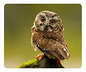 Owl oblong mouse pad by Cases & Mousepads