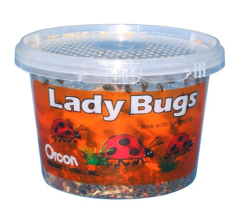 Orcon LB-C1500 Live Ladybugs, Approximately 1,500 Count by Orcon