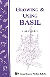 Image of the product Growing & Using Basil: that is listed on the catalogue brand of Storey Publishing, LLC.