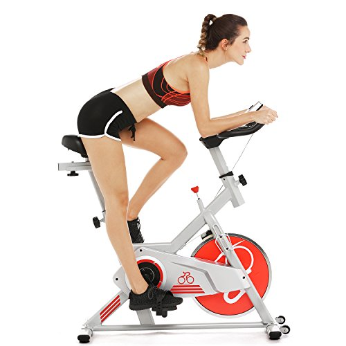 Indoor Cycling Bike Smooth Belt Driven, ...