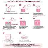 Yogurt Day Non-Electric Home Yogurt Maker, 30