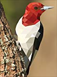 Paint by Sticker: Birds: Create 12 Stunning Images