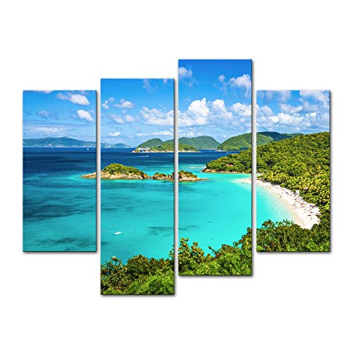 (Wall Art Decor Poster Painting On Canvas Print Pictures 4 Pieces Trunk Bay St John Virgin Islands United States Seascape Beach Framed Picture for Home Decoration Living Room Artwork)