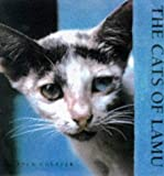 img - for The Cats of Lamu by Jack Couffer (1998-05-31) book / textbook / text book