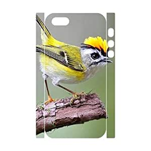 S-ADFG Cell phone Protection Cover 3D Case Hummingbird For Iphone 5,5S