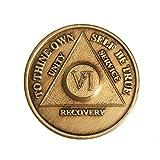 6 Year Bronze AA %28Alcoholics Anonymous