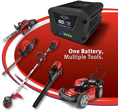 Snapper 60 Volt Lithium-Ion Battery
