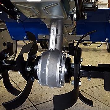 Motoazada Sep 125 Lombardini.: Amazon.es: Bricolaje y ...