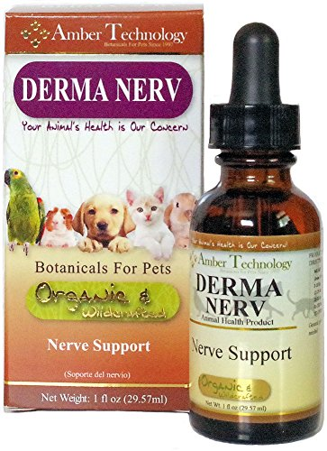 DermaNERV (1oz) - Nerve Support by Amber Technology