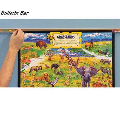 Bulletin Bars Size: 36'' by Best-Rite
