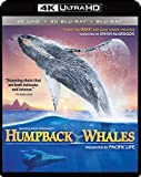 IMAX: Humpback Whales (4K UHD / 3-D Bluray/ Digital Copy) [Blu-ray] Image