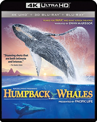 4K Blu-ray : Imax: Humpback Whales (4K Mastering, Widescreen)