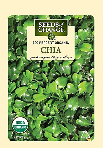 Seeds Of Change 07957 Certified Organic Chia Seeds 51P7im2rfnL