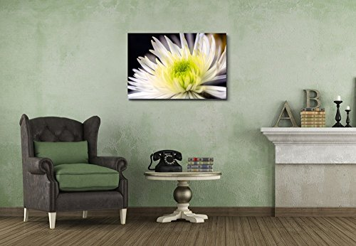Closeup of White Chrysanthemums Flower Wall Decor