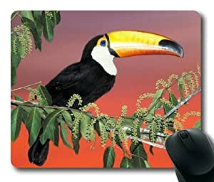 Gaming Mouse Pad, Toucans Rectangular Mouse Pad by mcsharks