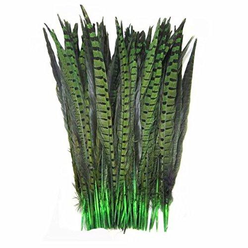 Celine lin 10PCS Natural Pheasant Feathers Pheasant Tails 14-16inch(35-40CM),Green