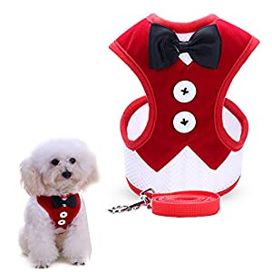 uFashion3C Dog Harness and Leash Set With Fancy Dress Black Bow Tie and Red Vest for Puppies and Smaller Dogs (Small, Red)
