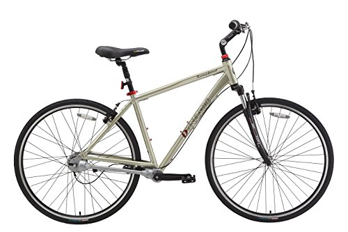 Dynamic Runabout 8 Hybrid Bicycle Chainless