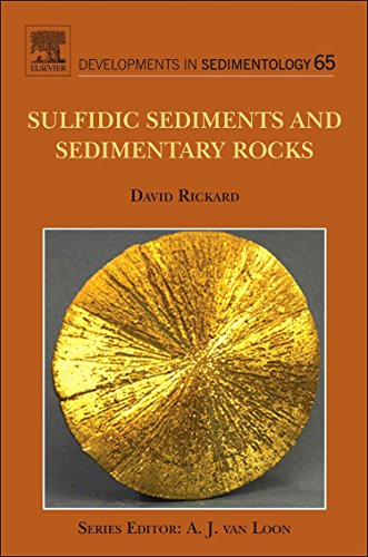 Sulfidic Sediments and Sedimentary Rocks, Volume 65 (Developments in Sedimentology)
