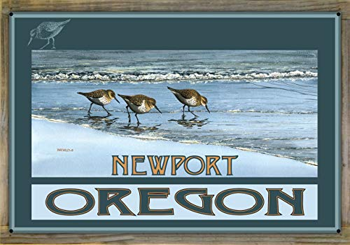 "Northwest Art Mall Newport Oregon Birds at Beach Metal Print on Reclaimed Barn Wood by Dave Bartholet (24"" x 36"")"