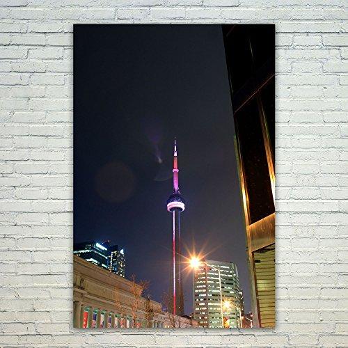 Outdoor Landscape Lighting Toronto in Florida - 4