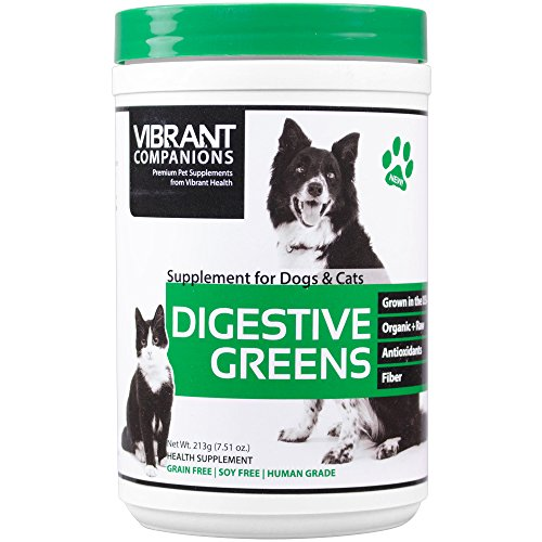 Vibrant Companions - Digestive Greens, Supports Digestion in Dogs & Cats, 7.51 oz Digestive Greens