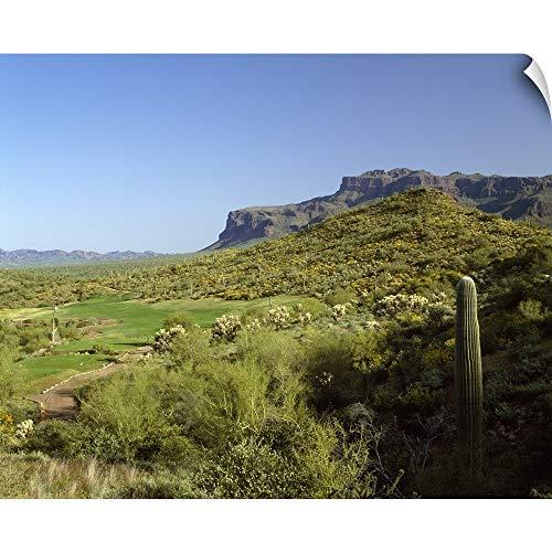"CANVAS ON DEMAND Golf Course, Gold Camp, Pinal County, Arizona Wall Peel Art Print, 24""x19"""