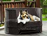 The Refined Canine's Wicker Dog Day Bed with Outdoor Cushion, My Pet Supplies
