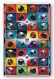(22x34) NFL - Helmets 2012 Football Poster