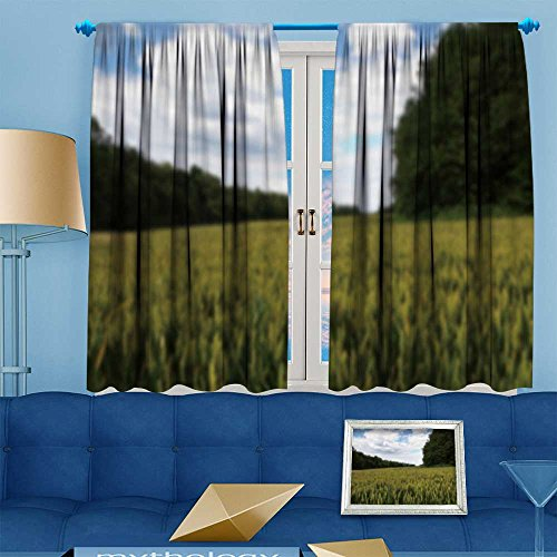 AmaPark Room Darkening Thermal Insulated Blackout Grommet Window Curtain,wheat grow in field in the chilterns england out of focus,for Living Room,108