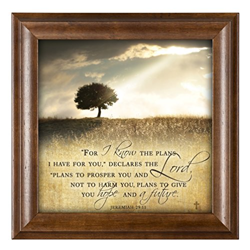 For I know the Plans I Have For You Jeremiah 29:11 12 x 12 Woodgrain Framed Wall Art Plaque (Cottage Wall Plaque)