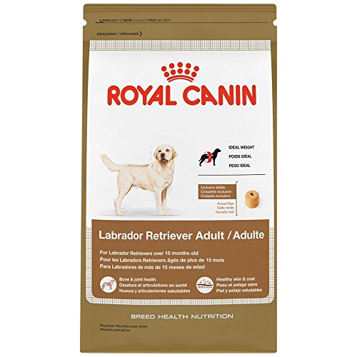 ROYAL CANIN BREED HEALTH NUTRITION Labrador Retriever Adult dry dog food, 30-Pound