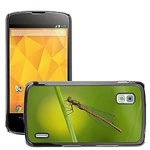 Print Motif Coque de protection Case Cover // M00125718 Libélula Meadow insectos Cerrar // LG Nexus 4 E960