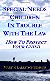 img - for Special Needs Children In Trouble With The Law: How To Protect Your Child book / textbook / text book