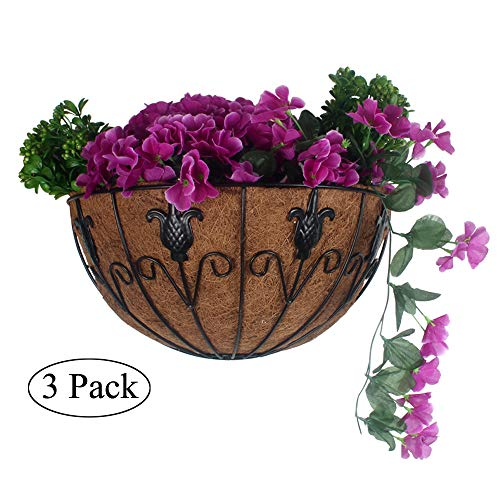 Flower Baskets Outdoor (Casolly 3 Pcs Flower/Plant Hanger Basket Wall Outdoor Coir Wall/Balcony Hanging Sling - Black (16 Inch))