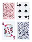 Trademark Copag Bridge Size Plastic Playing Cards - Best Reviews Guide