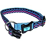 Hamilton 5/8-Inch Adjustable Dog Collar Fits 12-Inch to 18-Inch with Brushed Hardware Ring, Small, Red Brick
