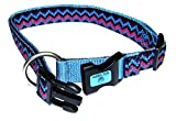 Hamilton 1-Inch Adjustable Dog Collar Fits 18-Inch to 26-Inch with Brushed Hardware Ring, Large, Ocean Blue Weave