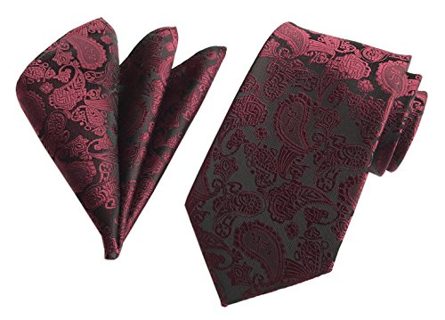 Secdtie Men's Wine Red Neckties Silk Tie For Men Suit Fitness Dress Fashion Gift ()