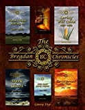Kyпить Storm Clouds Rolling In (#1 in the Bregdan Chronicles Historical Fiction Romance Series) на Amazon.com